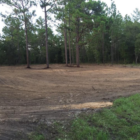 land clearing inverness fl